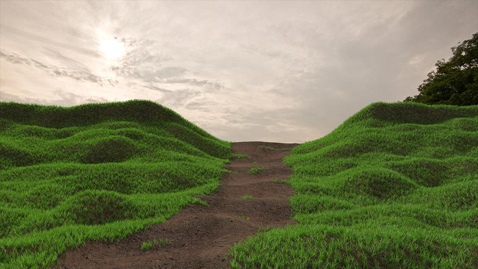 grass_scene_hq